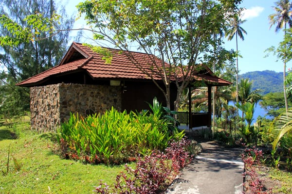 Rhinopias_Cottage_1